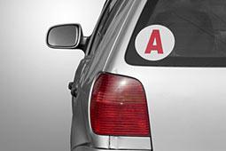 Dvr Fordert Anfänger Aufkleber Für Führerschein Novizen